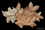 Leafy Wall Sculpture