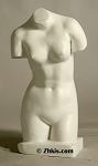 Contemporary Female Torso