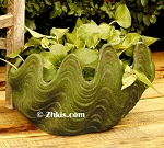 Deep Clam Shell Planter