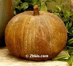 Large Pumpkin Decoration